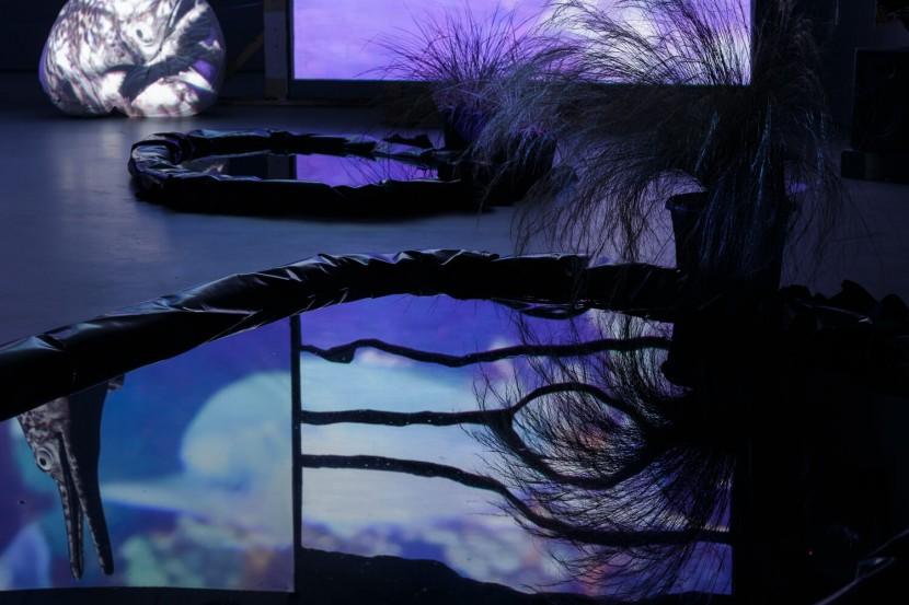 Shonisaurus-Popularis_Turf-Projects_Hazel-Brill-19.jpg