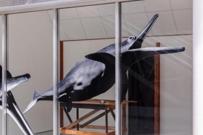 Shonisaurus-Popularis_Turf-Projects_Hazel-Brill-9.jpg