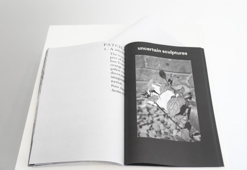 fungus-publication_1.jpg