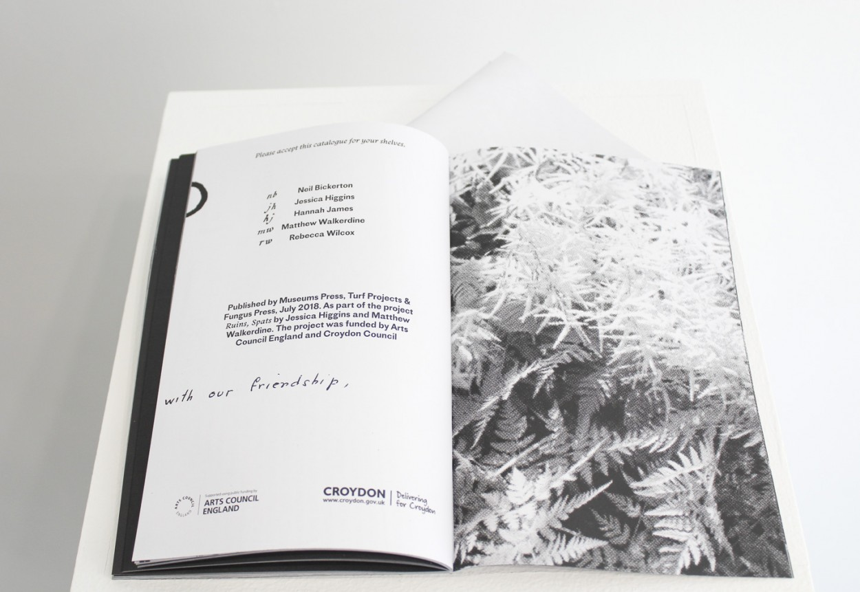 fungus-publication_3.jpg