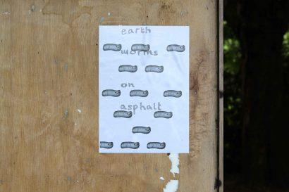 wandlesouth-alice-web.jpg