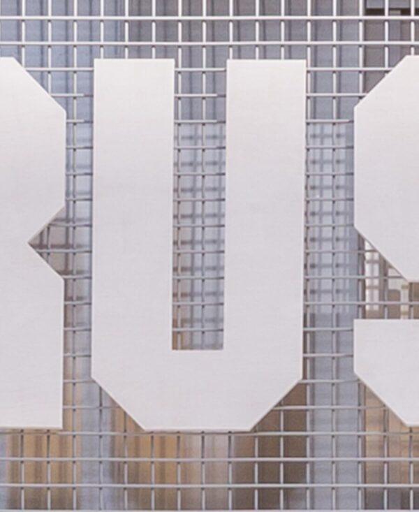 shonisaurus letter 'U'