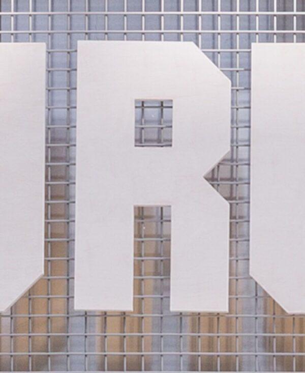 shonisaurus letter 'R'