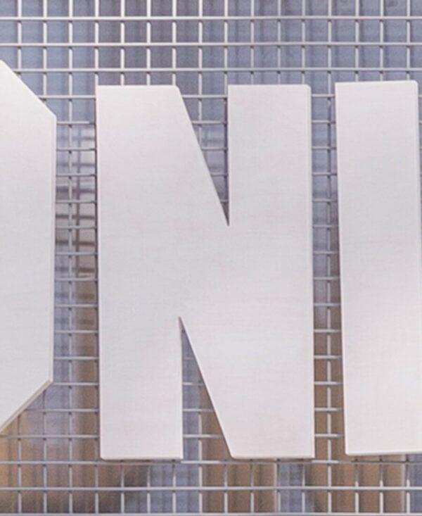 shonisaurus letter 'N'