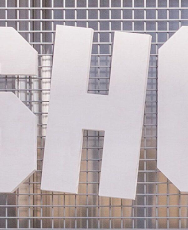 shonisaurus letter 'H'