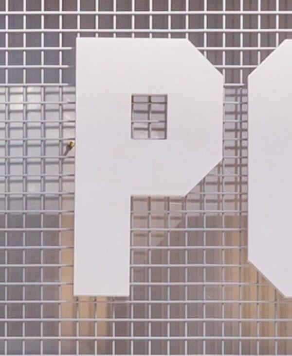shonisaurus letter 'P'