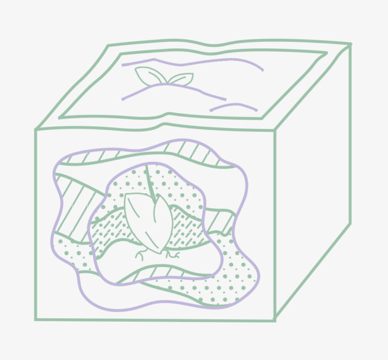 An illustration of a box made to look like a cross-section of a landscape, with a plant growing inside it