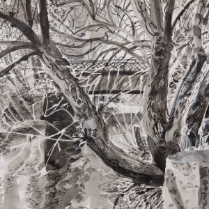 Charlie Reed River Wandle: A Constant Amid Change