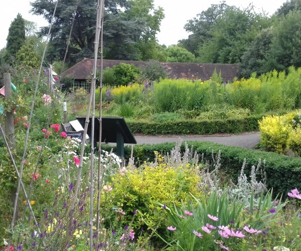 A landscape picture of Park Hill Park featuring a garden path and a variety of coloured flowers.