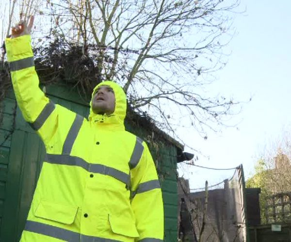 A white man in a neon yellow jacket is standing in front of a green shed and pointing at the blue sky. There is a trampoline and a tree with no leaves behind the shed.