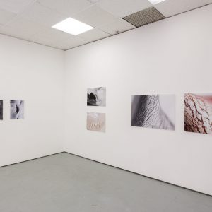 Installation View of 'ABRA ANTHILLS COMPLEXITIES' exhibition