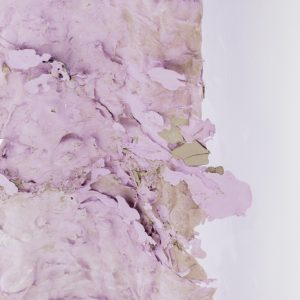 Leah Carless Powder coated steel, latex, pigments, clay, crushed pearl powder, cast silicone 150 x 235 x 40 cm 2018 Supported by The New Art Gallery Walsall