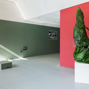 Installation views of Mothers at TURF Projects  Photo credits: Tim Bowditch