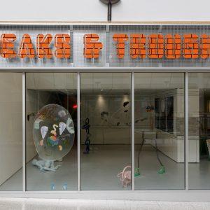 Installation views of Peaks and Troughs by Saelia Aparicio