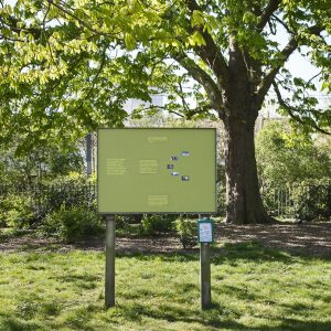 'ecstasy, scene two', Derica Shields, Fungus Press at Wandle Park