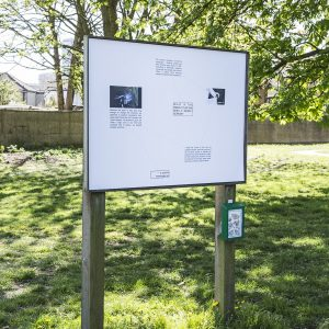 'ecstasy, scene one', Derica Shields, Fungus Press at Wandle Park
