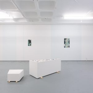 Installation views of Waves at Turf Projects 10th December 2016 - 21st January 2017