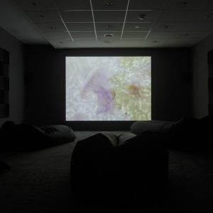 a faded projector screen in a dark room
