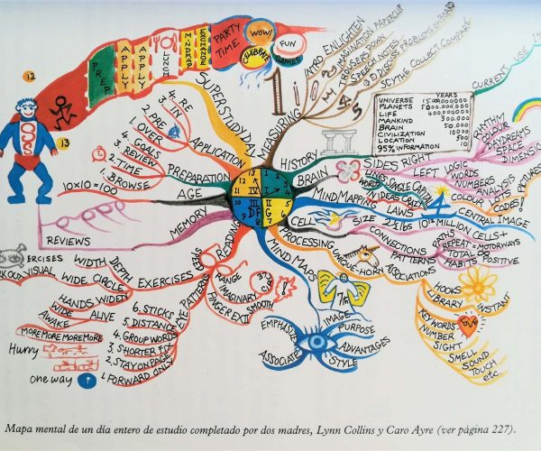mind map (1)